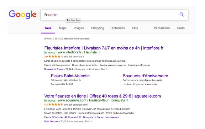 Exemple de résultat de recherche Google sponsorisé